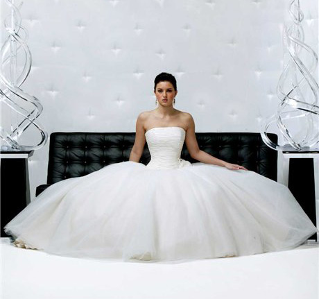 extravagant wedding dress